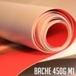 bache g M